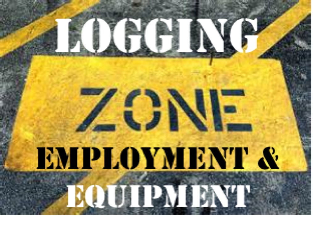 Logging Zone
