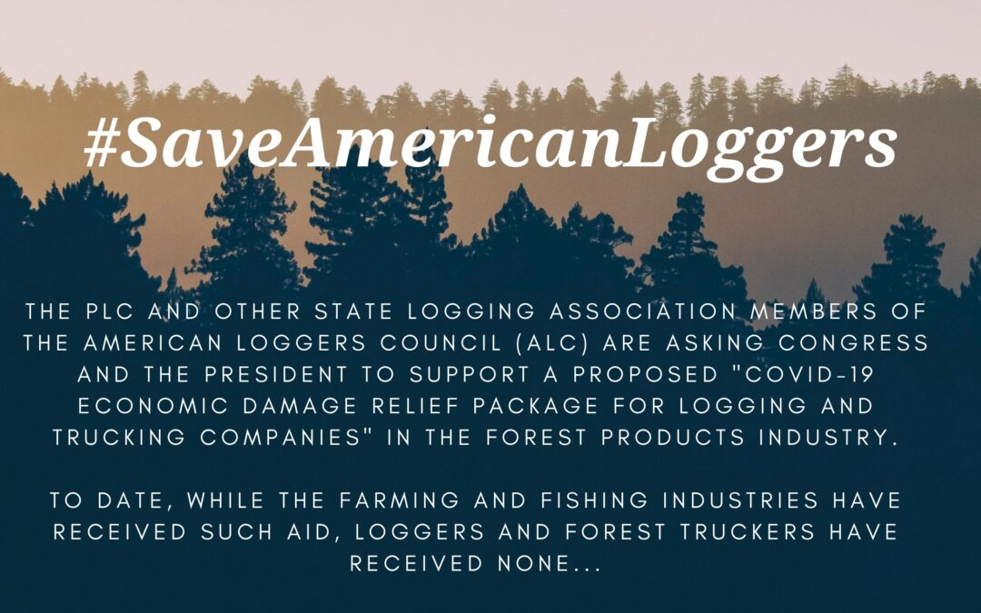 Stars of American Loggers and Swamp Loggers call for pandemic relief for logging industry